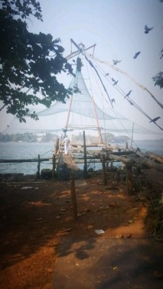 Traditional Chinese fishing nets along the beach in Cochin.