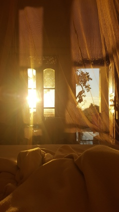 Morning sunrise from our bed!