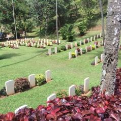 WW2 graves.