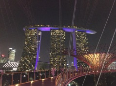 Marina Bay Sands Hotel looks stunning at night