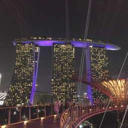 Marina Bay Sands Hotel looks stunning at night