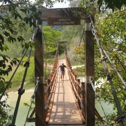 Walk the Bridge!
