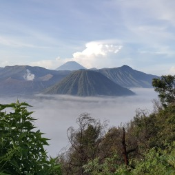 Mount Batok, a majestic green mountain, standing alongside Mount Bromo.