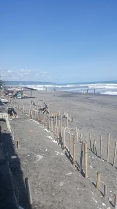 The vast volcanic sand.
