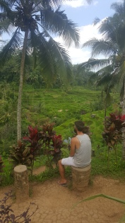 Mark admiring the views of the rice terraces.