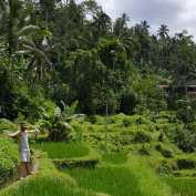 Mark showcasing The Tegalalang rice terraces in 10kms north of Ubud.