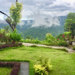Beautiful gardens and views at Aris homestay.