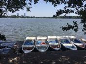 Fancy a boat ride?!