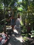 Palm trees lined the pathway to our guesthouse.