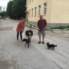 On a walk around Sreburna village with John and their dogs, Ziggy, Bob and Molly!