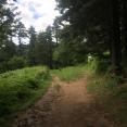 Starting our walk through Pelister National Park.