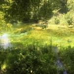 Natural springs.